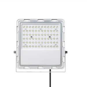 Whiteshousing New Design Flood light