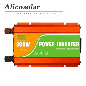 Pure Sine Wave 300w Inverter Off Grid 0.3kw Inverter