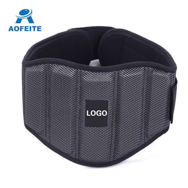 Professional adjustable lumbar support