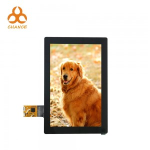 With capacitive touch panel 10.1 inch lcd 800*1280 MIPI DSI graphic high resolution tablet HMI screen ips tft lcd module