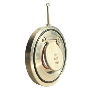Stainless Steel Single Door Check Valve