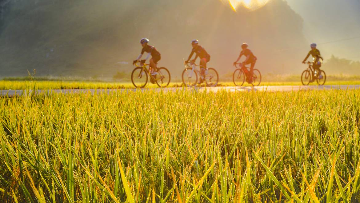 Cycling in Summer: Five Things to Pay Attention to When cycling in Summer