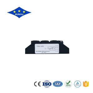 Professional China Power Module - Thyristor Diode Module – Runau Electronics