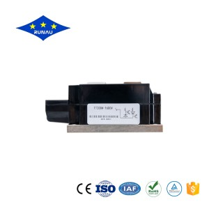 Professional China Power Module - Thyristor Module – Runau Electronics