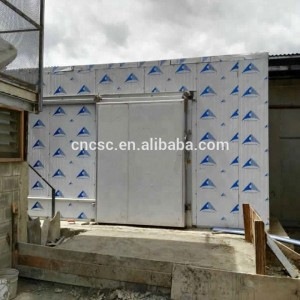 cold room/cold storage dubai for chicken cold storage with hot promotion