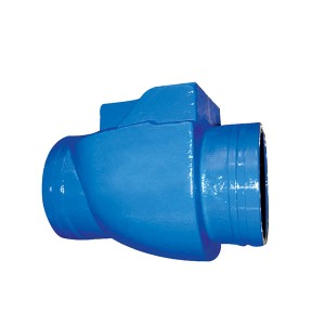 5904 Grooved Ends Swing Check Valve