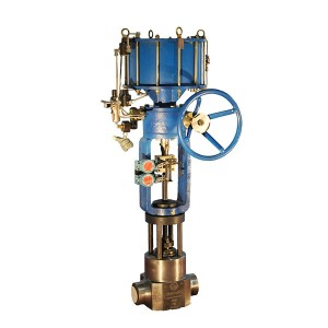 Drain valve for steam-water system