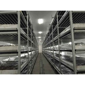 Aluminum Growing Mushrooms Shelves