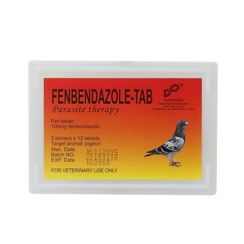 Fenbendazole tablet Featured Image