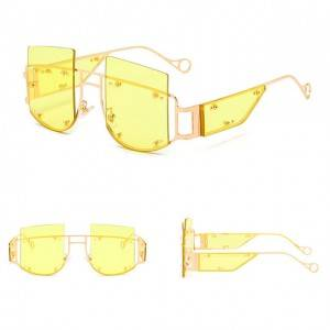 DLL901 Oversized Luxury Unisex Sunglasses