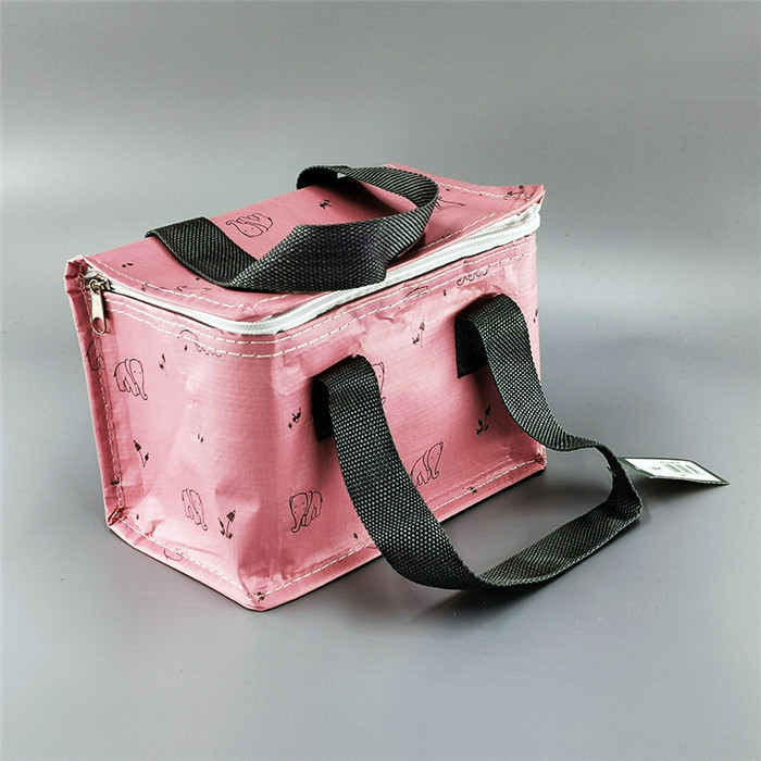 Cooler Bag cl19-01 Featured Image