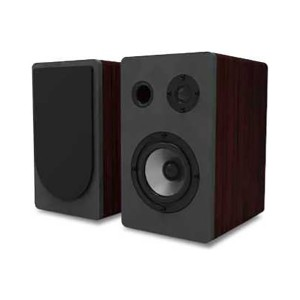 High Power Wooden Bookshelf Speaker for Home Theater Music Systems(BT-120)