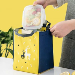 Nylon Outdoor Foldable Insulated Cooler Bag