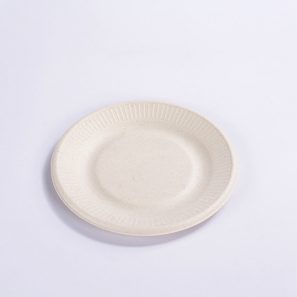 ZZ Eco Products 6 Inch Round Sugarcane Bagasse Plates, Disposable and Eco-Friendly, Pack of 1000 Featured Image