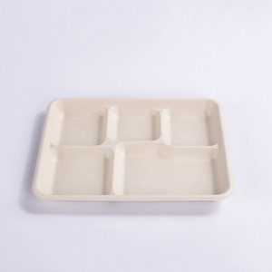 ZZ Eco Products 5-Compartments Lunch Tray 10″ x 8″ x 1″-500 count box