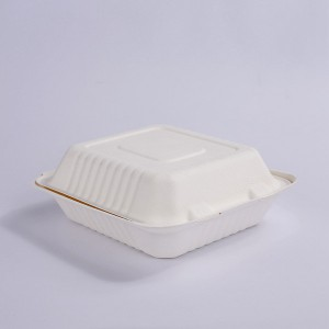 ZZ Biodegradable Rectangle White Sugarcane/Bagasse Clamshell Container 9″ x 9″ x3″ -200 count box