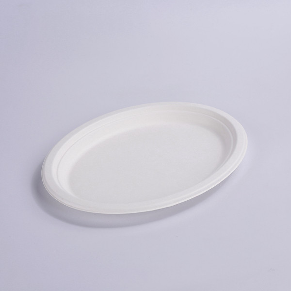 ZZ Eco Products Biodegradable White Sugarcane/Bagasse Oval Plate- 10″x 8″ x 4/5″-500 count box Featured Image