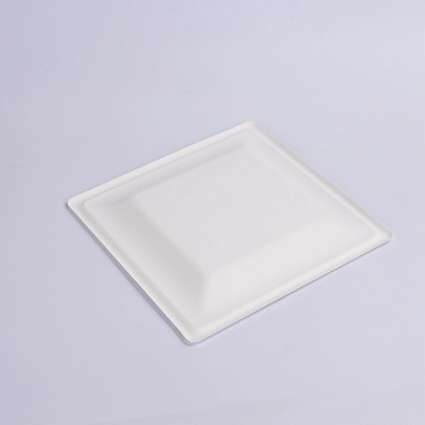 ZZ Eco Products Biodegradable White Sugarcane/Bagasse Square Plate- 6″x 6″ x 4/5″-500 count box Featured Image