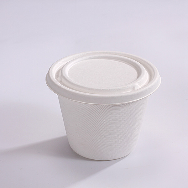 ZZ Eco Products Biodegradable Sugarcane Bagasse Soup Cup Container-16oz-500 count box Featured Image