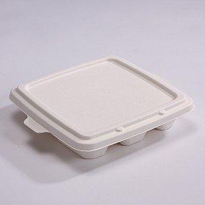 ZZ Eco Products Bagasse Lid-Fit SC-Container-500 count box