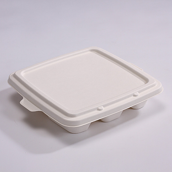 ZZ Eco Products Bagasse Lid-Fit SC-Container-500 count box Featured Image