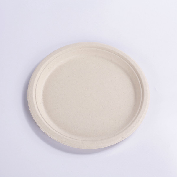 ZZ Disposable Sugarcane Bagasse Plates – Naturally Organic, Eco-friendly Biodegradable & Compostable – Paper & Plastic Alternative – Heavy Duty – 10″ Plate Featured Image