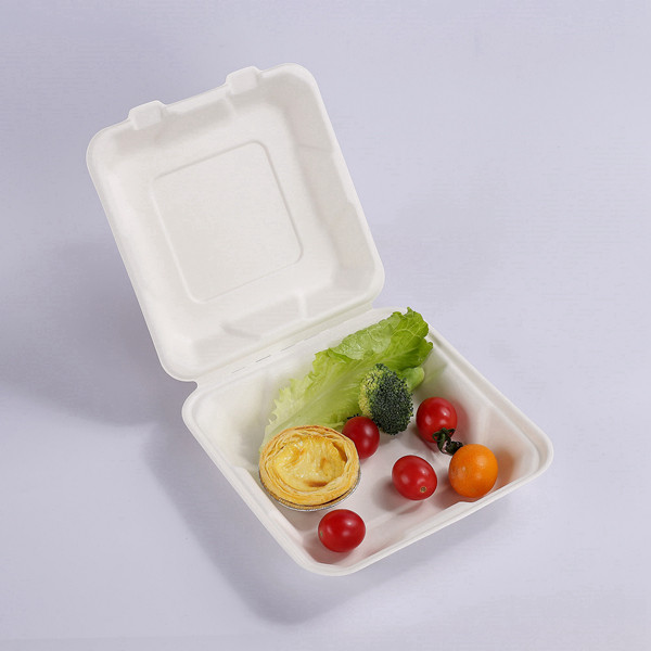 ZZ Biodegradable 8X8 Take Out Hinged Clamshell 200 Pcs. Microwaveable, Disposable Takeout Box to Carry Meals To Go. Great for Restaurant Carryout or Party Take Home Boxes Featured Image