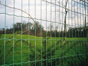 Ripple welded wire mesh, EURO fence