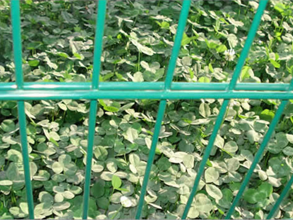 Double wire fencing Featured Image