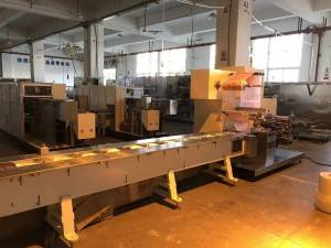 High speed Pillow Type Packaging Machine three side sealing 2000KG