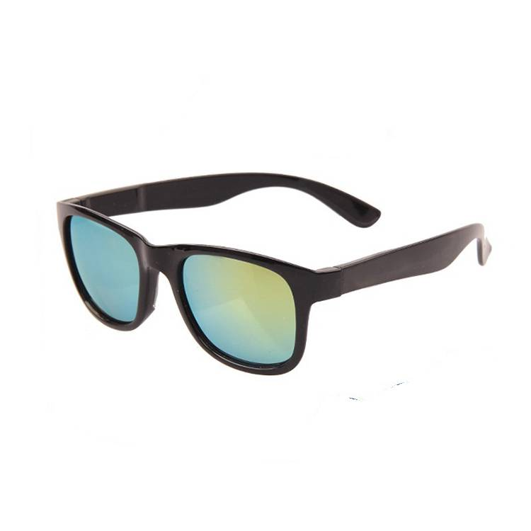 Chinese wholesale Buffalo Horn Sunglasses - Easy assembled interchangeable sunglasses – Baolai