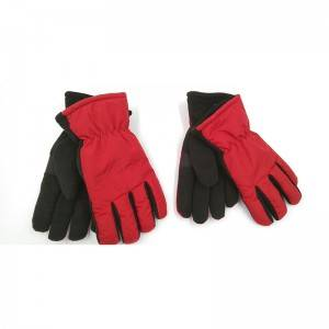 Fleece Gloves with Thinsulate