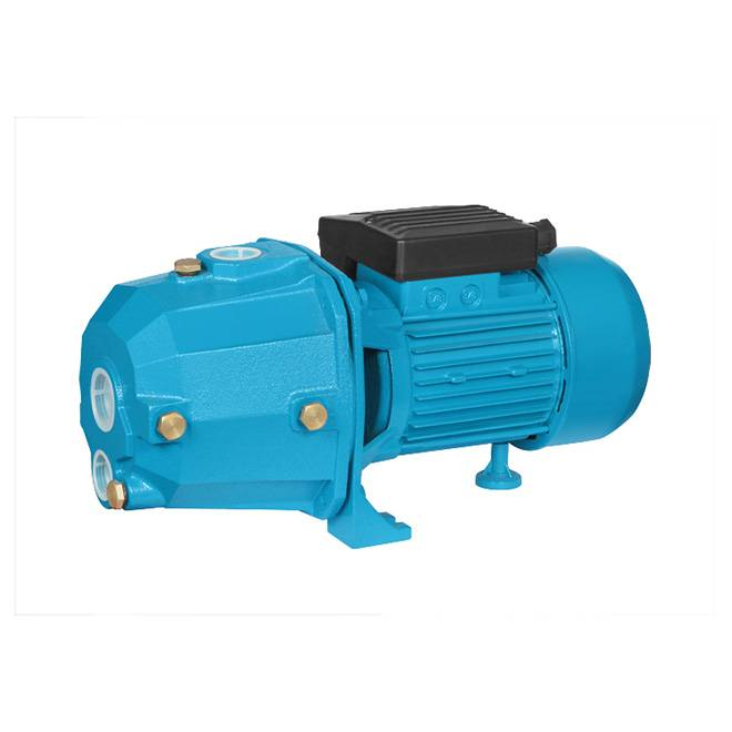 DP505 Gardon Self-Priming Deep Well Water Pump-Dp Series
