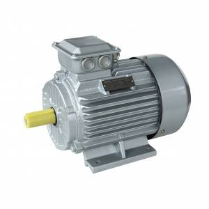 Heavy duty High efficient 380v 460v 50hz 60hz Y2 3phase motor