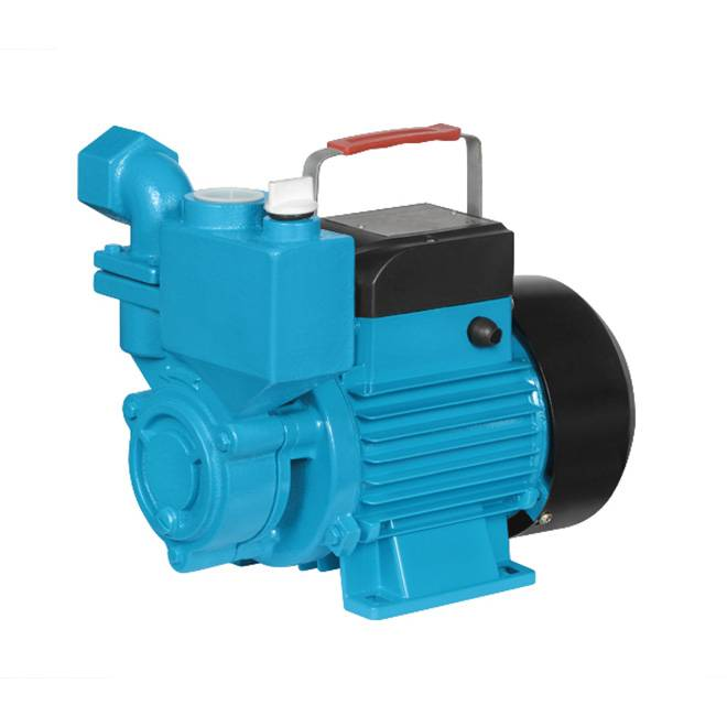 IZDB Single Phase Self Priming Vortex Household Water Pump