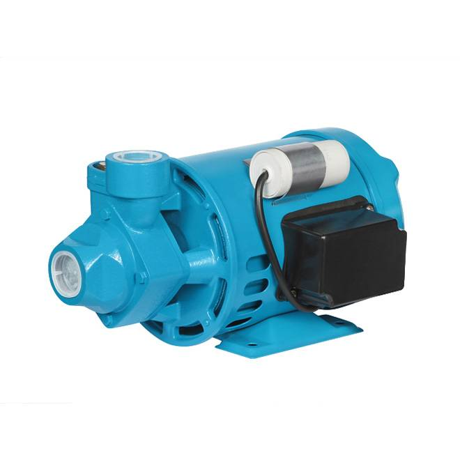 Professional PM16 Electric Water Pump