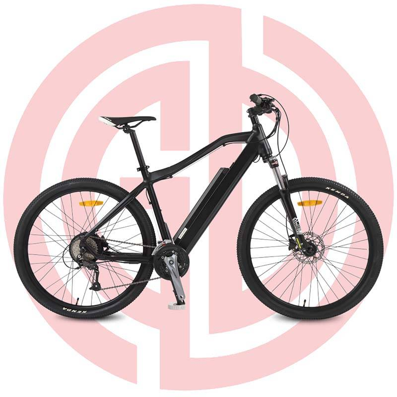 GD-EMB-014: Powerful electric mountain bike,36V 250W, rear mounted motor, alloy frame Featured Image