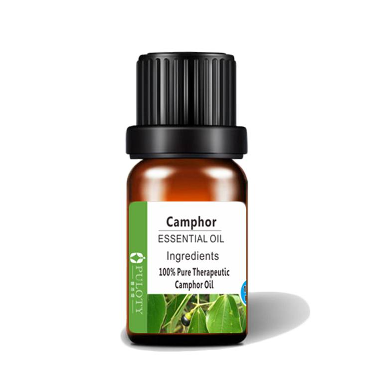 High quality medicine use camphor oil
