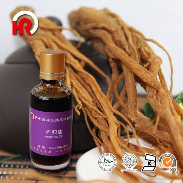Traditional Chinese medicine 100% pure angelica oil