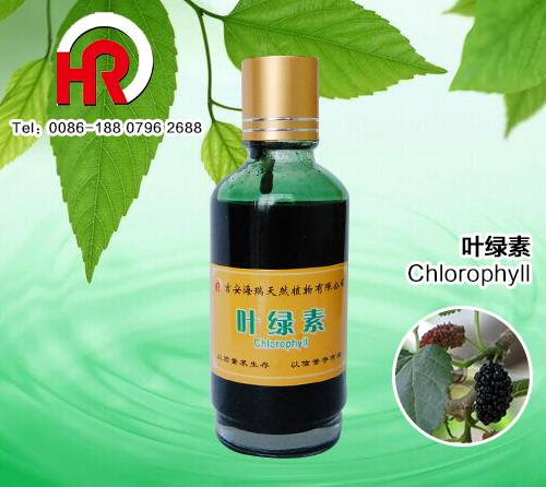 Plant Extract Small Glass bottle Packing super Chlorophyll powder
