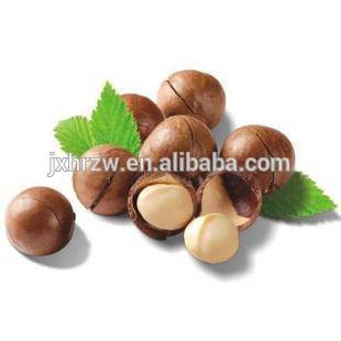Extract Macadamia Nut oil essential oil good for Soap