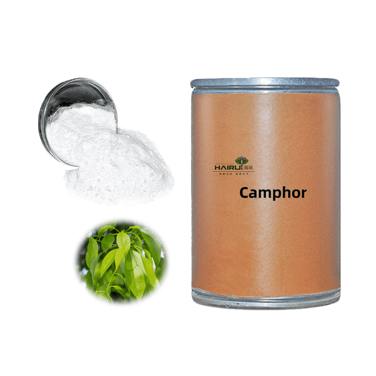 API Camphor powder