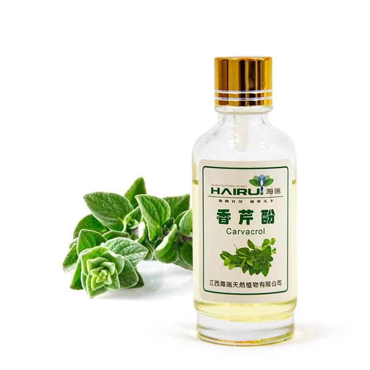 high quality bulk Carvacrol oil extract essential oil