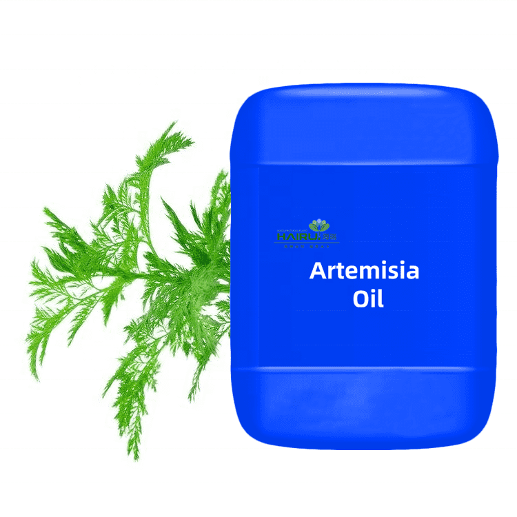 high quality Southernwood Pharmaceutical Grade Artemisia Annua Oil