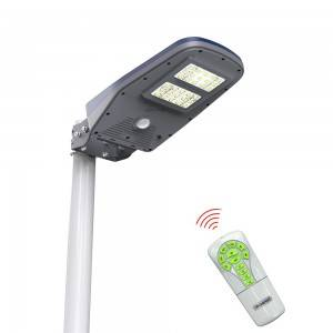 Outdoor Village Green Solar Lighting System For Garden