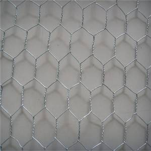 Galvanized hexagonal wire mesh Animal Fence