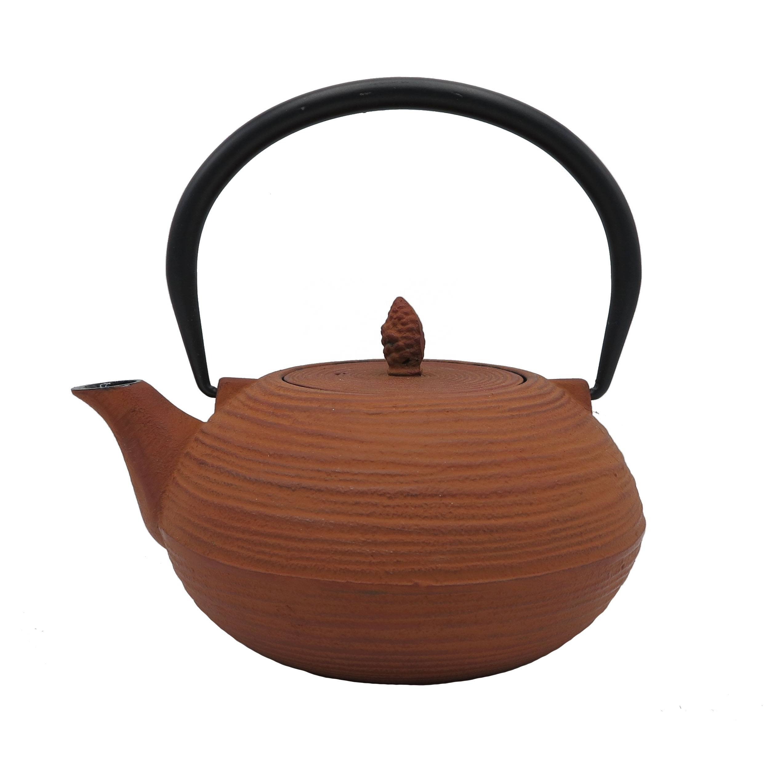 Hot Sale  enamel  tetsubin Chinese teapot cast iron kettle teapot