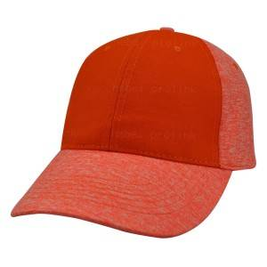 020008:6 panel cap,fashion cap
