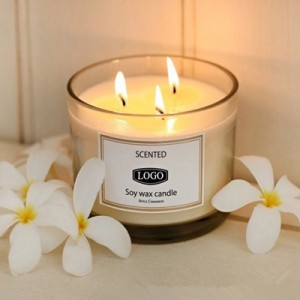 Natural Soy Wax Three Wicks White Frosted Holder Perfume Scented Candles with Private Labels