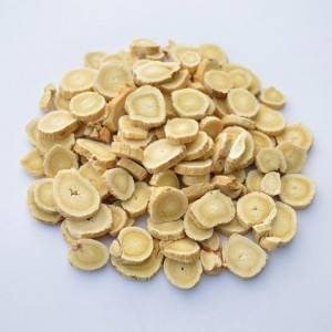Good Wholesale Vendors Rhizoma Anemarrhenae - Astragalus – HEX